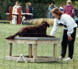 1997 MN Specialty Open Agility